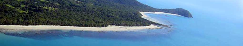 cape tribulation beach near your accommodation and sculpture trail