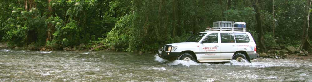cape tribulation  four wheel drive safari tours