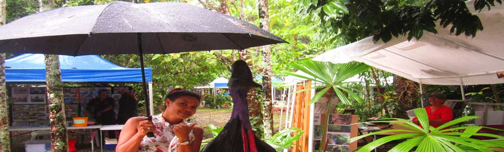 world cassowary day in cape tribulation