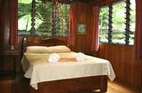cape tribulation bed and breakfast room