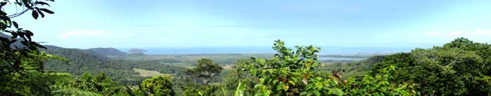 View over Snapper Island on the Daintree Coast